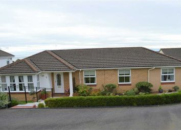 Thumbnail 3 bedroom detached bungalow for sale in Llwyn Rhedyn, Swansea