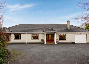 Thumbnail 4 bed detached bungalow for sale in Greenhill Road, Ballymoney, County Antrim