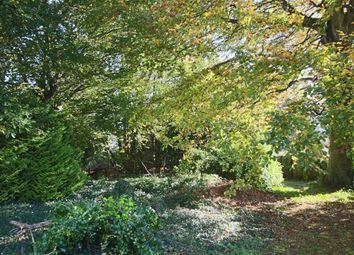 Thumbnail Land for sale in Summer Lane, Higher Brixham, Brixham