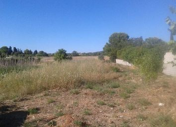 Thumbnail Land for sale in 34540, Balaruc-Les-Bains, Fr