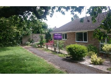 Thumbnail 3 bed semi-detached bungalow for sale in Hillside Road, Hungerford