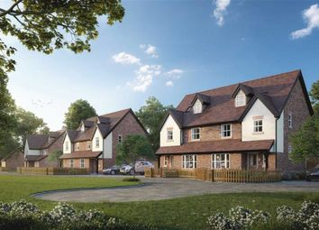 Thumbnail 4 bed semi-detached house for sale in Millers View, Much Hadham, Hertfordshire