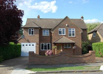 Thumbnail 4 bed detached house to rent in Gerrards Cross, Buckinghamshire