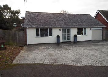 Thumbnail 2 bedroom bungalow for sale in Fir Close, Stevenage, Hertfordshire