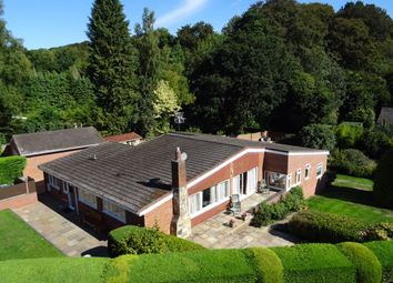 Thumbnail 4 bed detached bungalow for sale in Tangley, Andover
