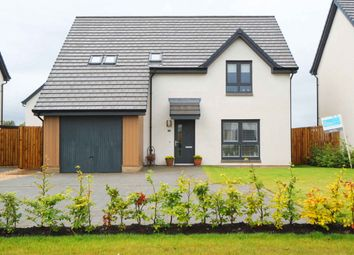 Thumbnail 3 bed detached house for sale in Grayhaugh Wynd, Dundee