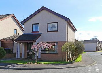 Thumbnail 3 bed detached house for sale in Trinafour, Perth