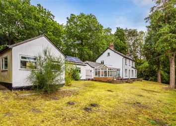 Thumbnail 3 bed detached house for sale in Brookwood, Woking, Surrey