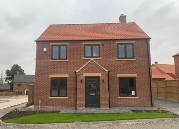Thumbnail 4 bed detached house to rent in Bee Orchid Way, Louth