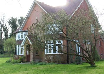 Thumbnail 4 bed property to rent in West Meon, Petersfield