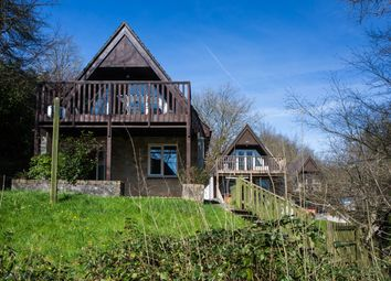 Thumbnail 4 bed detached house for sale in Valley Lodges, Honicombe Park, Callington