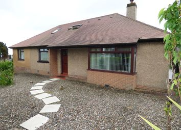 Thumbnail 4 bedroom detached bungalow for sale in Law Road, Dundee