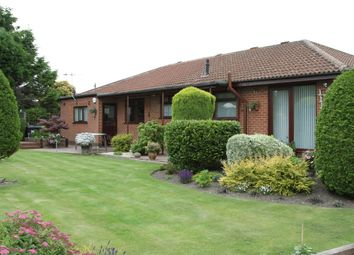 Thumbnail 4 bed bungalow for sale in Halls Lane, Newthorpe