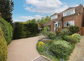 Badgers Way, Marlow SL7, south east england property