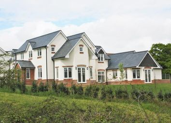 Thumbnail 4 bed detached house for sale in Newtown Road, Hook Park, Warsash