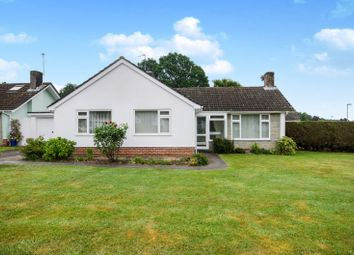 Thumbnail 3 bed bungalow to rent in Talbot Drive, Highcliffe, Christchurch