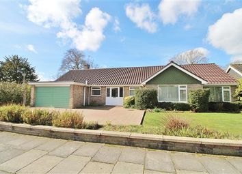 Thumbnail 3 bedroom bungalow for sale in The Lawns, Ipswich