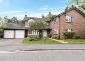 Thumbnail 5 bed property to rent in Vaillant Road, Weybridge, Surrey