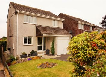 Thumbnail 4 bed detached house for sale in Briarwood, Liskeard
