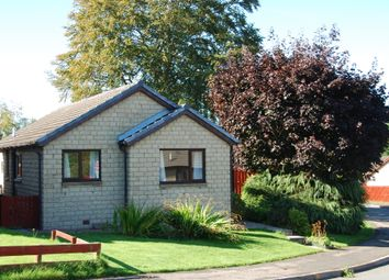 Thumbnail 3 bed bungalow to rent in Murray Place, Smithton