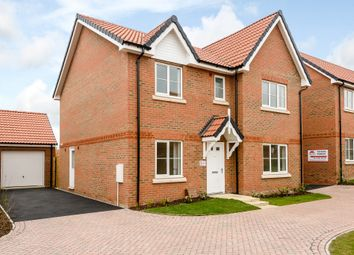 Thumbnail 4 bed detached house for sale in London Road, Wymondham