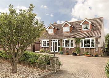 Thumbnail 5 bed detached house for sale in The Avenue, Wraysbury, Staines