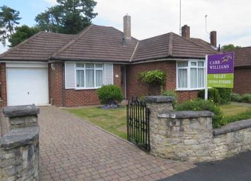 Thumbnail 3 bed bungalow to rent in Blackmoor Wood, Ascot, Berkshire