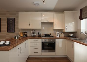 Thumbnail 3 bed semi-detached house for sale in The Tyrone, Travellers Green, Co Durham