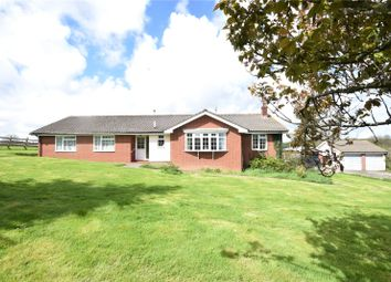 Thumbnail 3 bed bungalow for sale in Peters Marland, Torrington