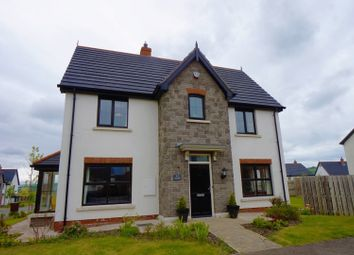 Thumbnail 3 bedroom detached house for sale in Coopers Mill Heights, Belfast