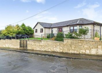 Thumbnail 5 bed bungalow for sale in Ayr Road, Lanark
