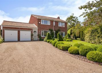 Thumbnail 4 bed detached house for sale in Holmefield Croft, Scrooby, Doncaster