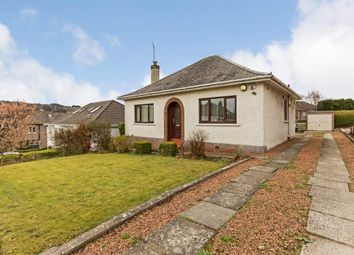 Thumbnail 2 bed bungalow to rent in Lammermuir Drive, Paisley
