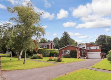 Thumbnail 5 bedroom detached house for sale in Acresdale, Bolton