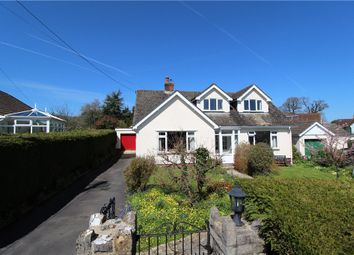 Thumbnail 3 bed detached bungalow for sale in Whitehayes Close, Kilmington, Axminster, Devon