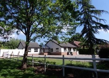 Thumbnail 4 bed bungalow for sale in Little Burstead, Billericay, Essex