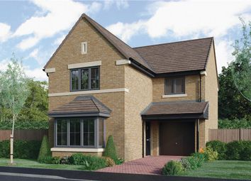 """Thumbnail 3 bedroom detached house for sale in """"The Malory"""" at Roundhill Road, Hurworth, Darlington"""