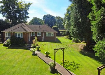 Thumbnail 3 bed detached bungalow for sale in Headley Road, Grayshott, Hindhead