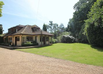 Thumbnail 4 bed detached house to rent in Rad Lane, Peaslake, Guildford