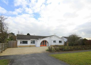 Thumbnail 4 bedroom detached bungalow for sale in Chestnut Springs, Lydiard Millicent, Wiltshire