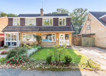 Thumbnail Semi-detached house for sale in Longpoles Road, Cranleigh