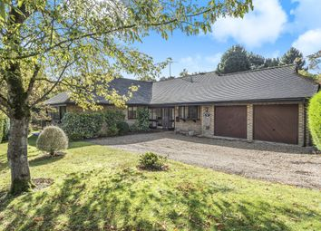 Thumbnail 3 bed detached bungalow for sale in The Hawthorns, Smock Alley, West Chiltington