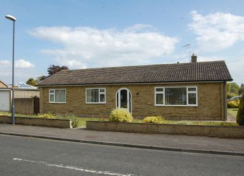 Thumbnail 3 bed bungalow to rent in Winton Road, Northallerton