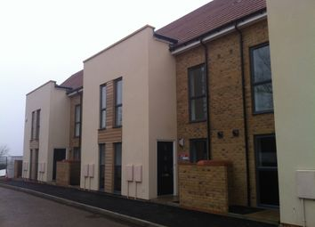 Thumbnail 4 bedroom terraced house to rent in Whitehouse Lane, Cambridge