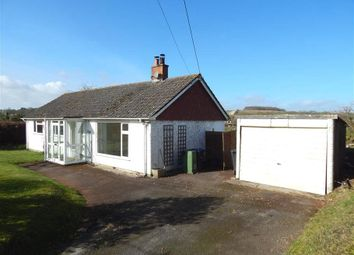 Thumbnail Bungalow to rent in Meadow Vale, Brunton, Collingbourne Kingston