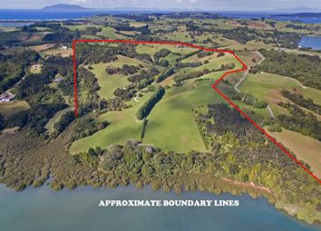 Thumbnail 4 bed property for sale in Matakana, Rodney, Auckland, New Zealand