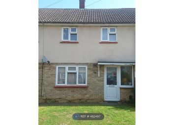 Thumbnail 3 bed terraced house to rent in Hawkins Road, Cambridge