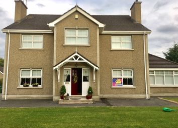 Thumbnail 4 bed detached house for sale in Derrytrasna Road, Lurgan