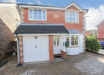 Thumbnail 4 bedroom detached house for sale in Birch Grove, Cwmbran