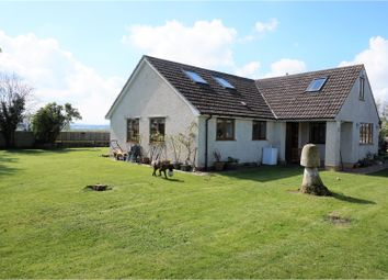 Thumbnail 5 bed detached bungalow for sale in Worthy Lane, Taunton
